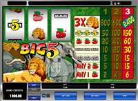 how to win on the pokies nz